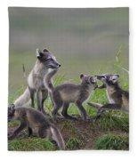 111130p063 Fleece Blanket