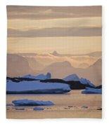 111130p142 Fleece Blanket