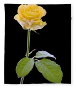 111216p338 Fleece Blanket