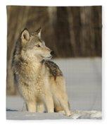 Wolf In Winter Fleece Blanket