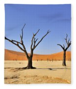 120118p016 Fleece Blanket
