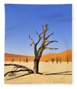 120118p018 Fleece Blanket