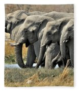 120118p051 Fleece Blanket
