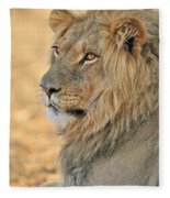 120118p092 Fleece Blanket