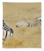 120118p096 Fleece Blanket