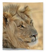 120118p103 Fleece Blanket