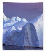 120223p179 Fleece Blanket