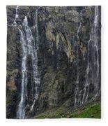 120520p197 Fleece Blanket