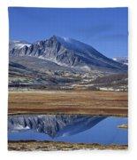 121213p099 Fleece Blanket