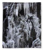 121213p146 Fleece Blanket