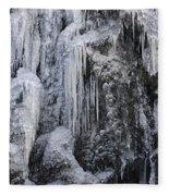 121213p150 Fleece Blanket