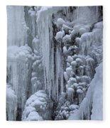121213p157 Fleece Blanket