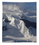 Antarctica Fleece Blanket