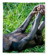 Bonobo Baby Fleece Blanket