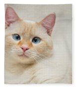 Flame Point Siamese Cat Fleece Blanket