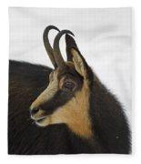 130201p201 Fleece Blanket