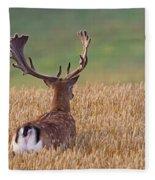130201p294 Fleece Blanket