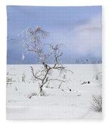 130201p330 Fleece Blanket