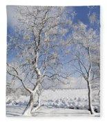 130201p335 Fleece Blanket