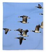 130215p251 Fleece Blanket