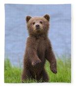131018p233 Fleece Blanket