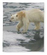 Polar Bear Walking On Ice Fleece Blanket