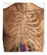 The Renal System Fleece Blanket