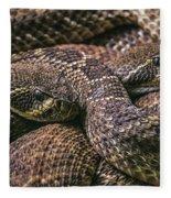 140420p282 Fleece Blanket