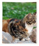 Cat In Hydra Island Fleece Blanket