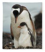 Gentoo Penguin With Young Fleece Blanket