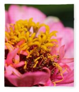Zinnia From The Candy Mix Fleece Blanket