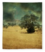 1997 Fleece Blanket