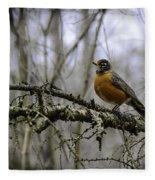 1st Robin Of Spring Fleece Blanket