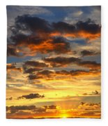 A Sonoran Morning  Fleece Blanket