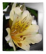 Alstroemeria Named Marilene Staprilene Fleece Blanket