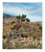 Andreas Canyon Dreams Fleece Blanket