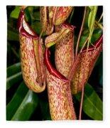 Asian Pitcher Plant Fleece Blanket
