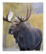 Autumn Bull Moose IIi Fleece Blanket