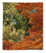autumn colours in Bavaria Fleece Blanket