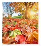 Autumn Fall Landscape In Park Fleece Blanket