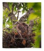 Baby Red Shouldered Hawk In Nest Fleece Blanket