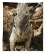 Baby Rock Squirrel Fleece Blanket