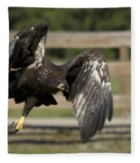 Bald Eagle In Flight Photo Fleece Blanket