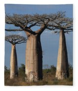 baobabs of Madagascar Fleece Blanket