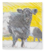 Belted Galloway Cows Fleece Blanket