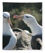 Black Browed Albatross Pair Fleece Blanket