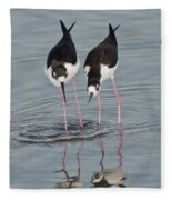 Black-necked Stilt Fleece Blanket