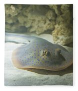 Blue Spotted Fantail Ray  Fleece Blanket
