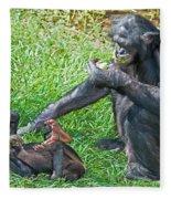 Bonobo Adult And Baby Fleece Blanket