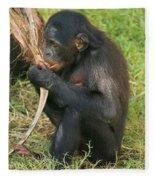 Bonobo Fleece Blanket